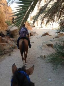 Oasis of Wadi